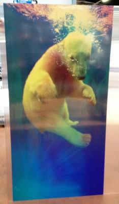 Lenticulaire ours-bébé (1)