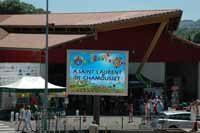 Rassemblement-des-St-Laurent-(2)
